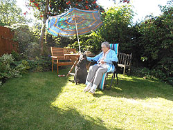 Sam and Granny Beech catching a few rays in my enclosed garden